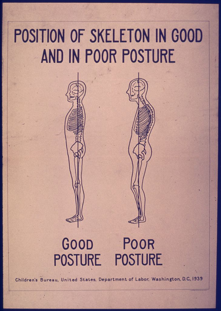 posture improvement skeleton