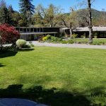 Marin Art and Garden Center Grassy Area