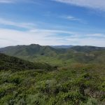 Marin County Headlands