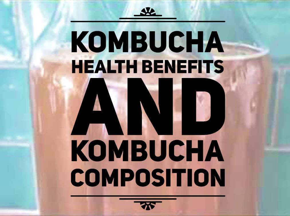 kombucha health benefits