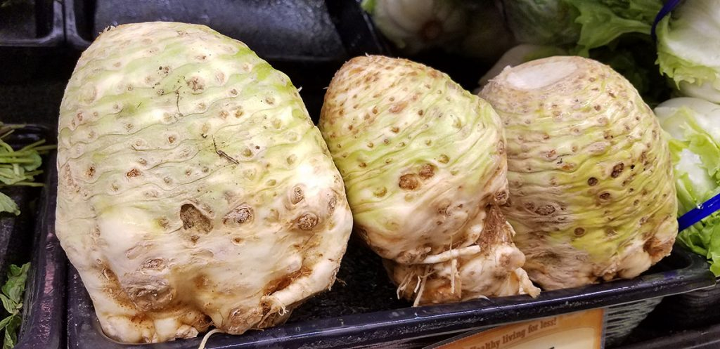 Selecting the perfect celeriac in the store