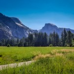 yosemite national park meadow view