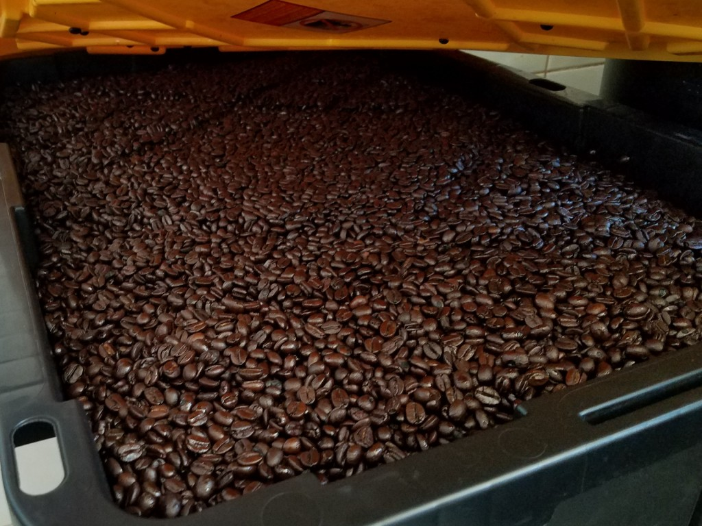 puerto vallarta coffee after roasting