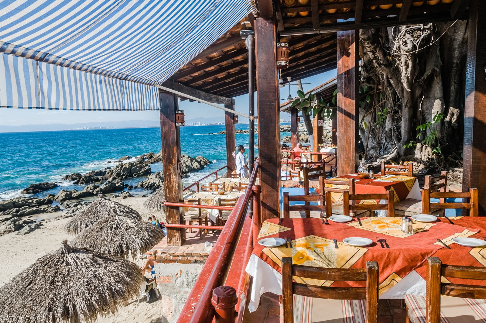 puerto vallarta vegan restaurants