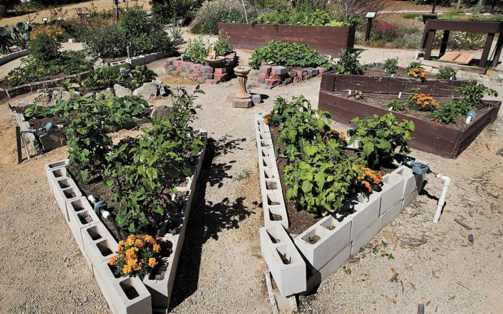 Raised bed ideas: cinder block
