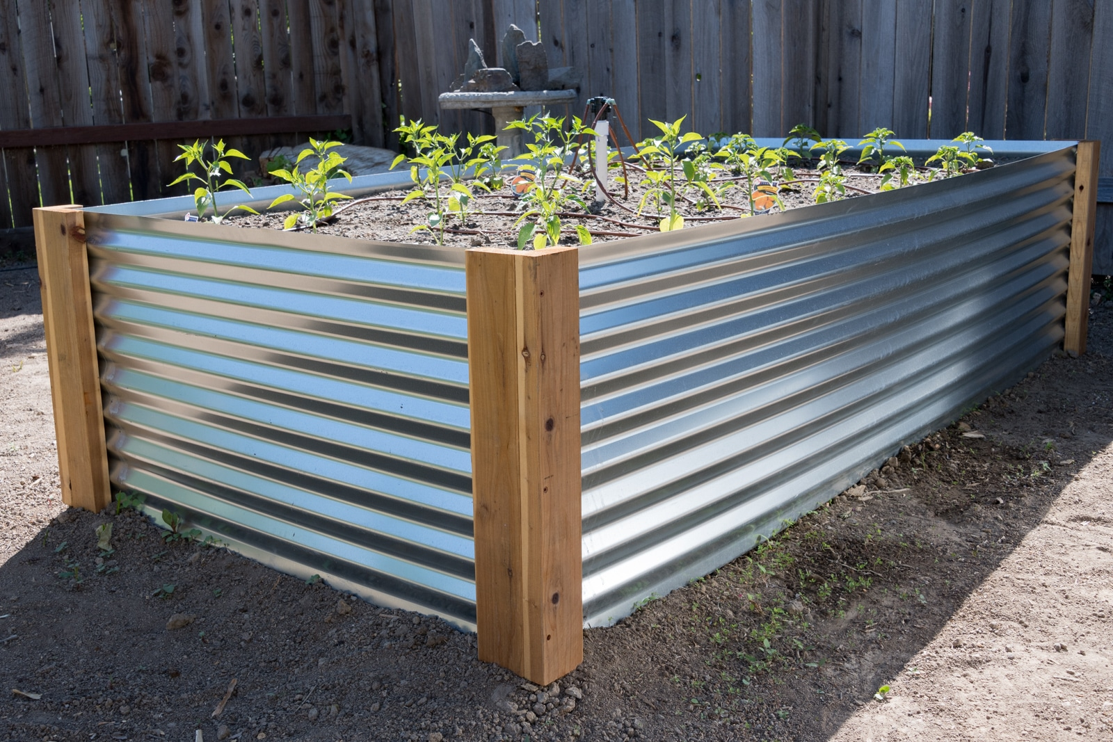 Corrugated Metal Raised Beds for the Garden