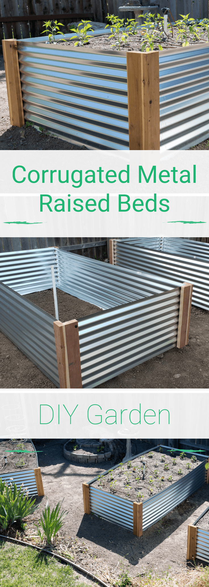 Raised Garden Beds Corrugated Metal Pinterest