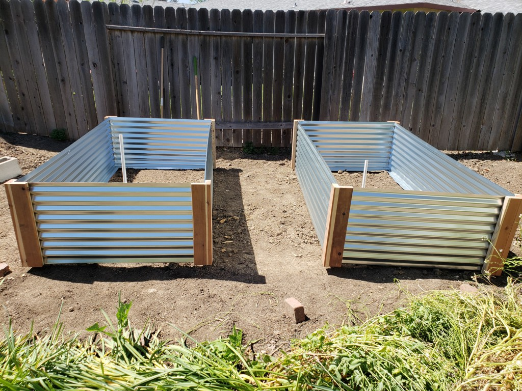 Perfecting the spacing plans for two metal raised garden beds