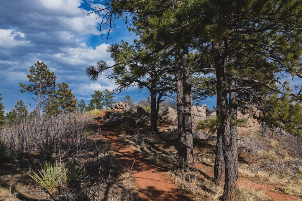 Blodgett peak trail hiking colorado springs